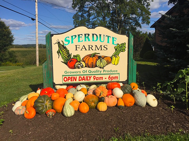 A family fun festival of fruits, gourds and all things with the flavor of Fall