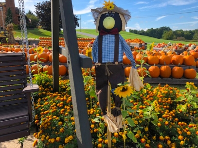 Scarecrow cropped